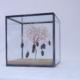 boomkunst in glazen kubus