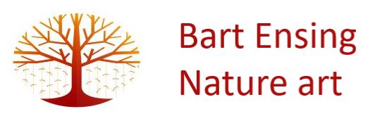 Bart Ensing
