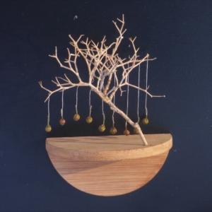 seed tree